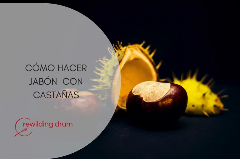 CÓMO HACER JABÓN CON CASTAÑAS