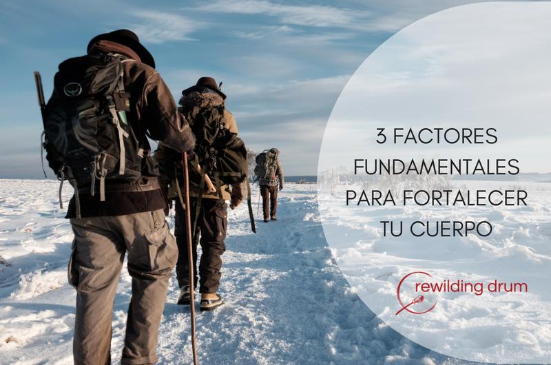 3 FACTORES FUNDAMENTALES PARA FORTALECER TU CUERPO